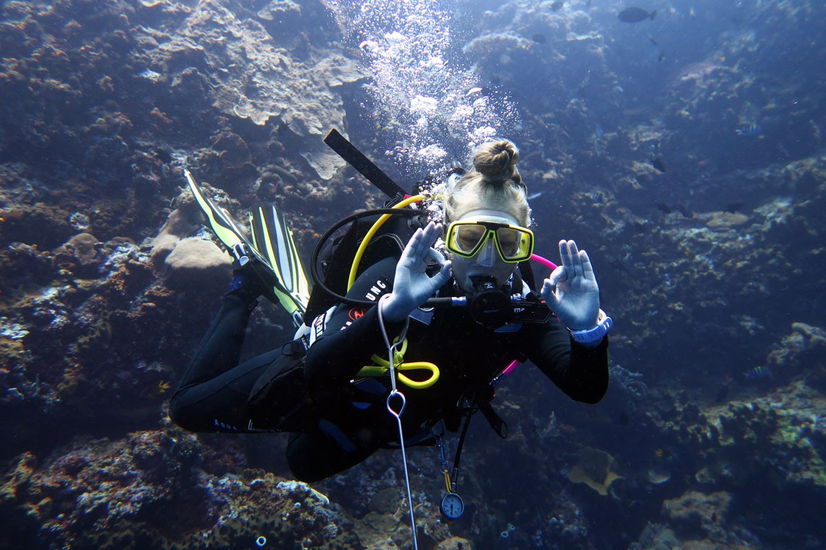 PADI Divemaster course with Living Colours Diving Resort